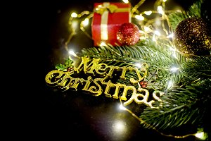 Merry Christmas inscription, fir and