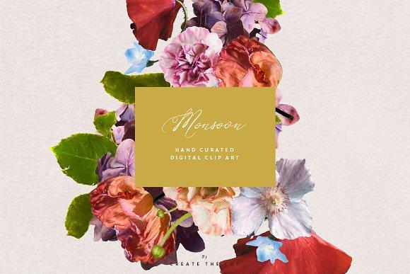 Digital Floristry - Monsoon in Illustrations