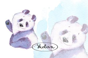 Watercolor Panda and background