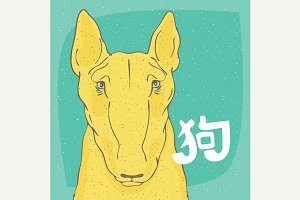 Yellow dog Bull Terrier and Chinese