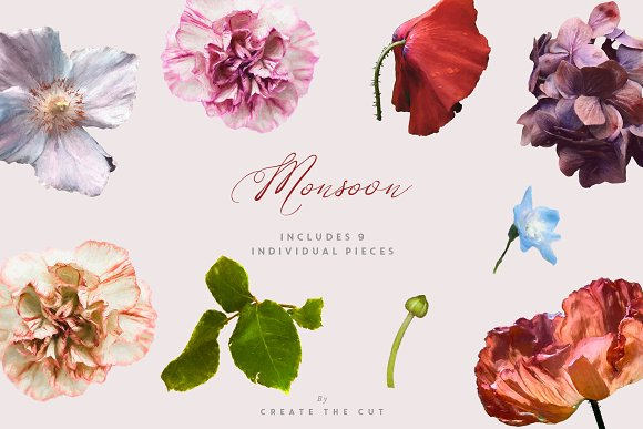 Digital Floristry - Monsoon in Illustrations - product preview 6