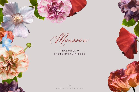 Digital Floristry - Monsoon in Illustrations - product preview 7