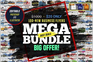 100 Business Flyers Bundle