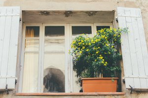 French window and Flowerpot