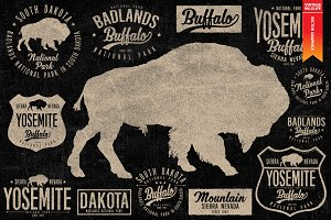 BUFFALO - Wildlife collection