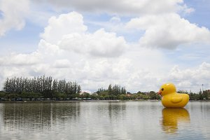 Large yellow rubber duck