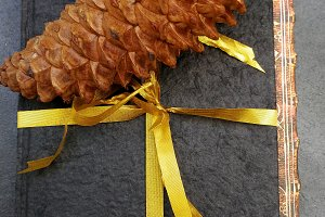 Notebook with a ribbon and pinecone