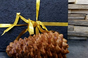 Notebook with ribbon and pinecone