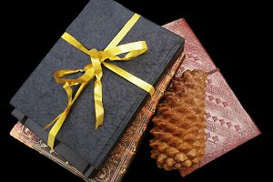 Notebooks, golden ribbon, pinecone