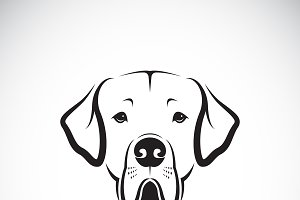 Vector of Great Dane dog head.