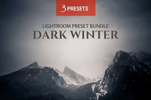 Dark Winter 3 LR Preset Bundle
