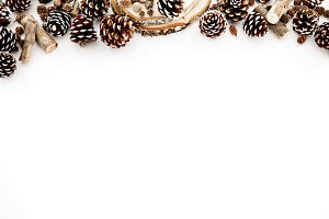 Pinecones on white background
