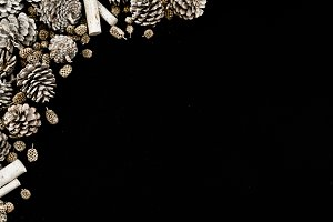 Pinecones on black background
