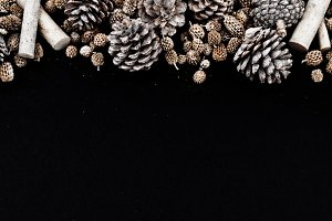 Square|Pinecones on black background