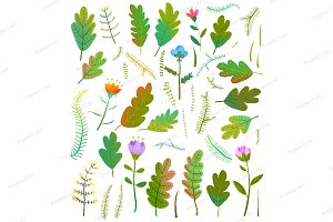 Leaves foliage flowers clipart