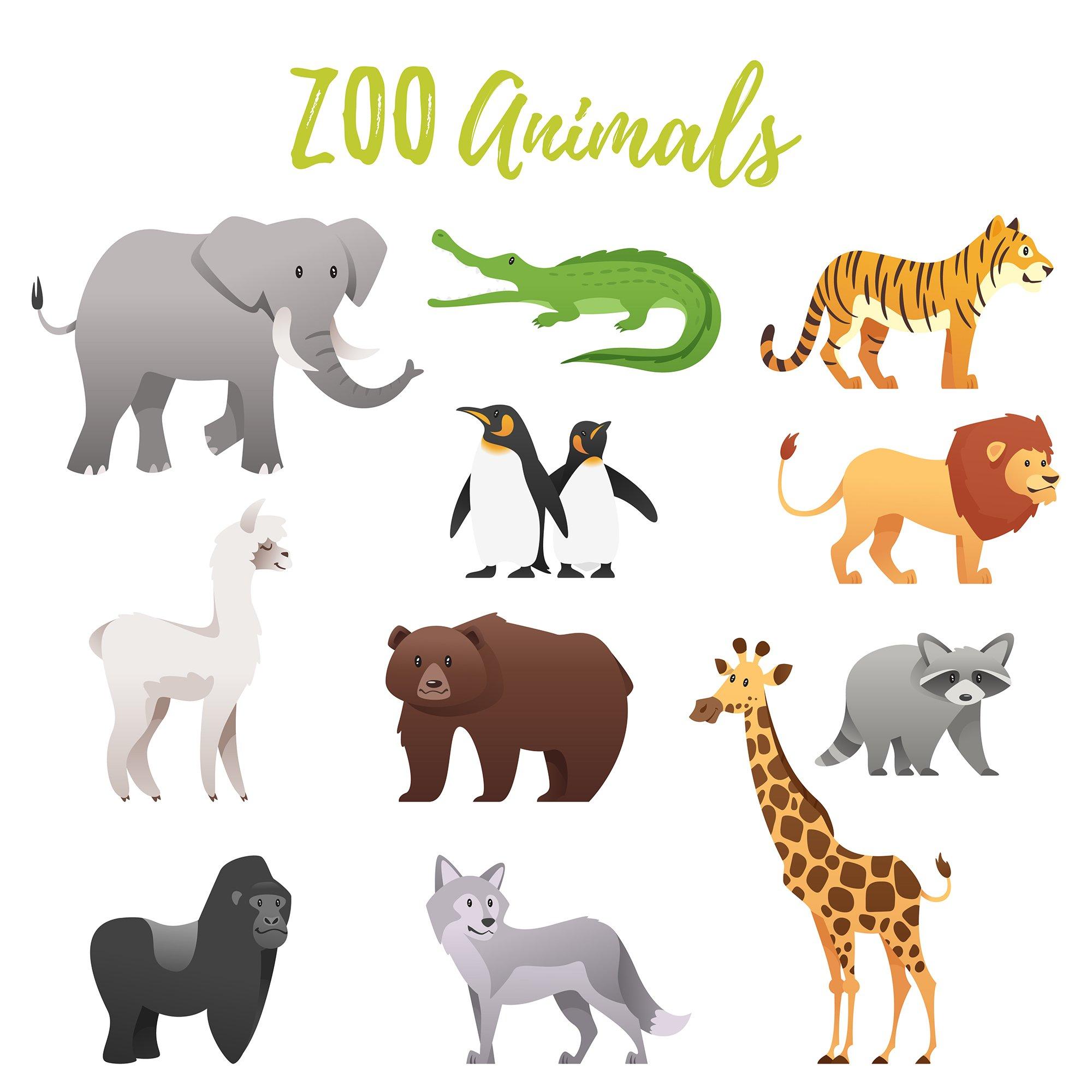 Zoo animals ~ Illustrations ~ Creative Market