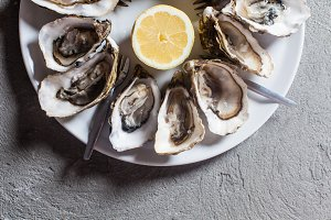 Oysters on the plate