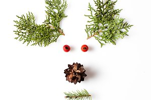 minimalistic Reindeer Face