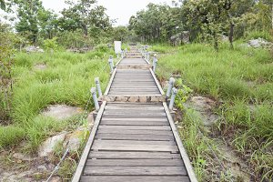 Walkway bridge to mountain