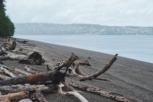Point Defiance Beach