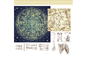 Human Skeleton, Bones, Celestial Map