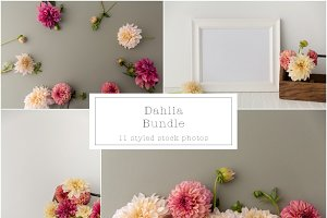 Dahlia Styled Mock Up Bundle