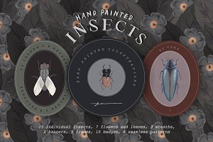 Hand Painted Insects Clipart