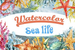Watercolor sea life SUPER SET