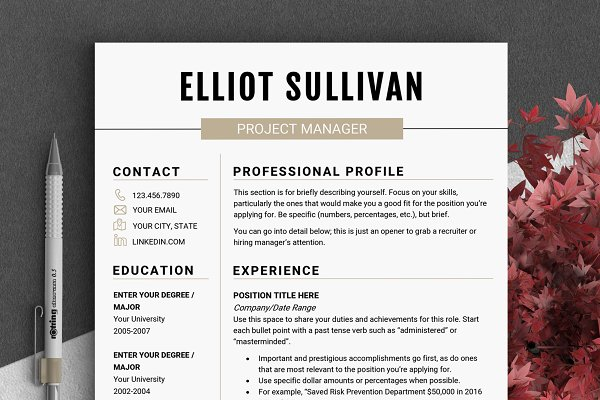Resume Templates: LevelUpResume - RESUME Design CV Template (MS Word)