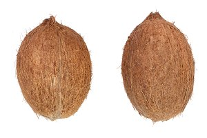 two whole coconut isolated on white background. Flat lay. Top view