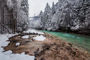 River in the winter forest