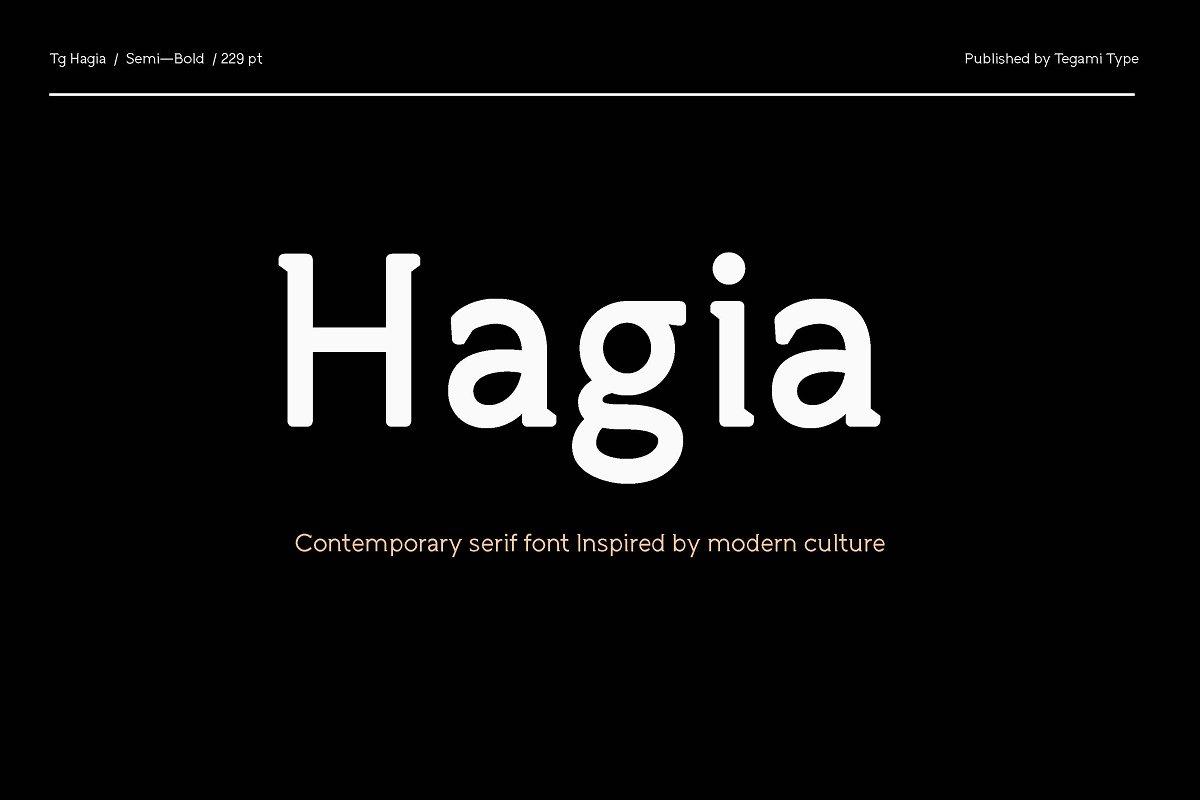TG Aqsa Grotesque Pro type Fonts Sans serif Serif