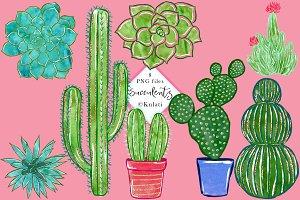 Cactus / Succulents clip art