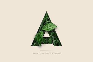 UPDATE - Abundant Greenery