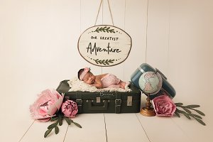 Newborn Digital Backdrop
