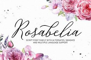 Rosabelia - Script & Sans Serif