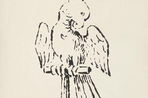 Vintage Cockatoo icon (PSD)