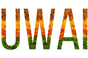 word kuwait country is written with leaves on a white insulated background, a banner for printing, a creative developing country colored leaves kuwait
