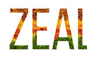 word new zealand country is written with leaves on a white insulated background, a banner for printing, a creative developing country colored leaves new zealand