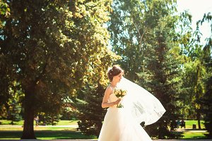 The beautiful brunette bride on a walk in park