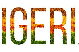 word nigeria country is written with leaves on a white insulated background, a banner for printing, a creative developing country colored leaves nigeria