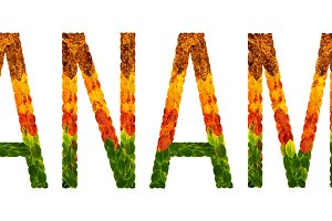 word panama country is written with leaves on a white insulated background, a banner for printing, a creative developing country colored leaves panama