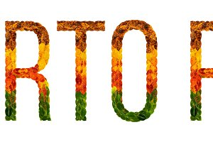 word puerto rico country is written with leaves on a white insulated background, a banner for printing, a creative developing country colored leaves puerto rico