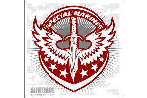 Fighter squadron airforce - military aviation