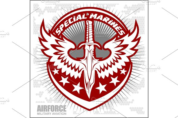 Fighter Squadron Airforce Military Aviation