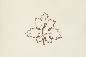 Maple leaf icon (PSD)