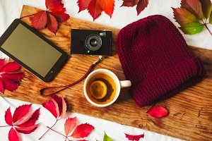 hot tea with lemon. warm knitted hat. tablet and camera. red leaves