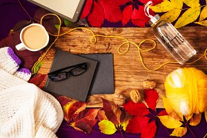 colorful leaves. comfort and warmth. hot coffee and grapes with nuts. Warm scarf. tablet and notepad.