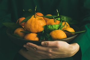 Fresh tangerine fruit with leaves in plate in female hands