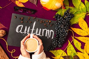 hot cappuccino. autumn cosiness. leaves in different colors
